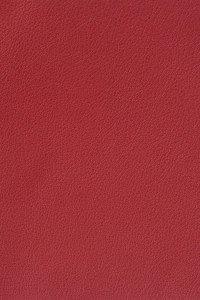 Leather Craft _ GR250 Formula Red