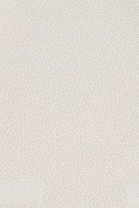 Leather Craft _GR400 Omega Ivory
