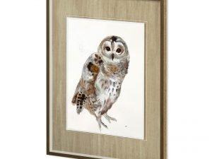 11498 -OWL II