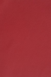 Leather Craft _ GR250 Formula Red