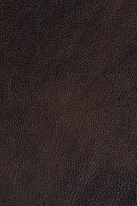 Leather Craft _ GR400 Bourbon Creole