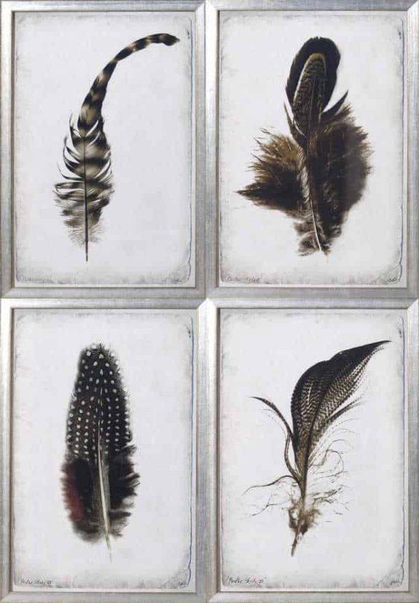 quatro feather group
