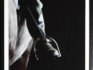 equestrian grey scale