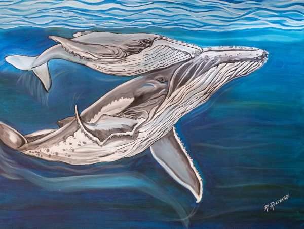 whale mom and calf