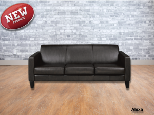 Alexa leather sofa