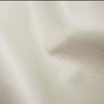 Mid GRD Sciena Ivory