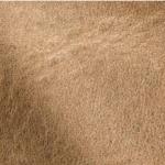 Vintage Mustang Biscuit