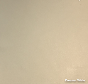 Dreamer White